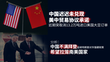 中国迟迟未兑现美中贸易协议承诺 仍大幅减少购买美国大豆