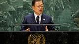 """朝鲜回应文在寅联大""""停战""""发言    中国立场引关注"""