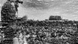 八九民运学生领袖王丹拍卖诗作   所得款项捐建六四纪念馆