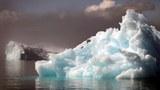 北极是全球升温最快的地区,今年极端气候频频肆虐北半球,跟北极暖化脱不了关系。